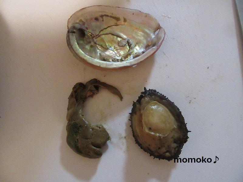 山梨の煮貝で炊き込みご飯