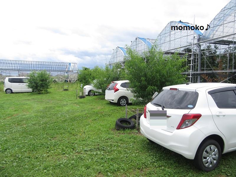 中込農園さんの駐車場2