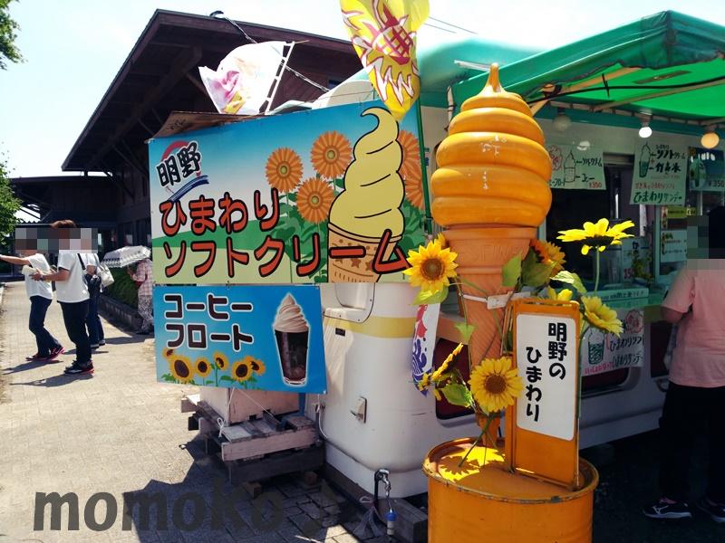 明野のひまわりソフトクリーム