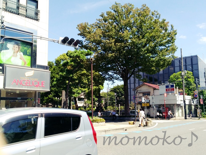 大宮氷川神社までの道のり7